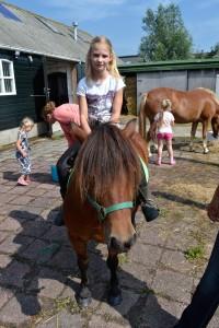 Paarden RRL website-0978